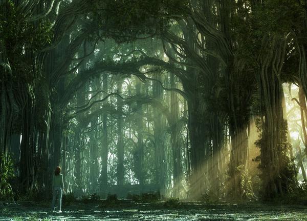 Fantasy Forest, Wei Wei Hua