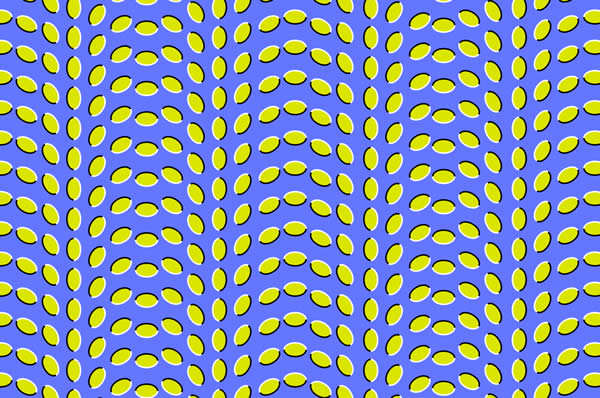 Motion Illusion in a Stationary Image