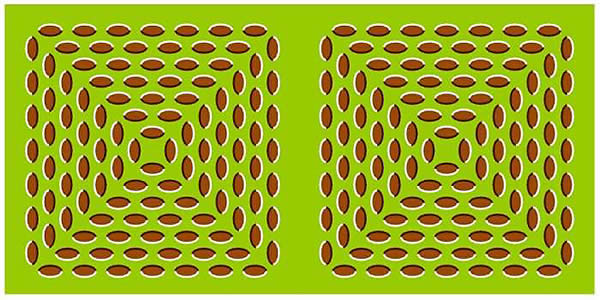 Optical Illusion - Leaves