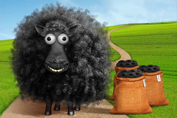 Baabaa Black Sheep