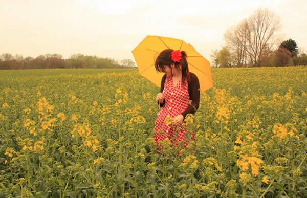 Yellow Fields Forever