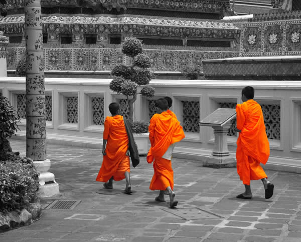 Selective Colour Monks