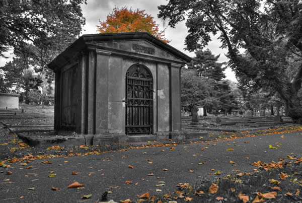 Fall Selective Color