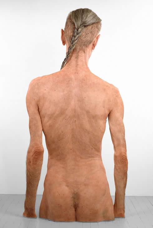 Large Murray - Back