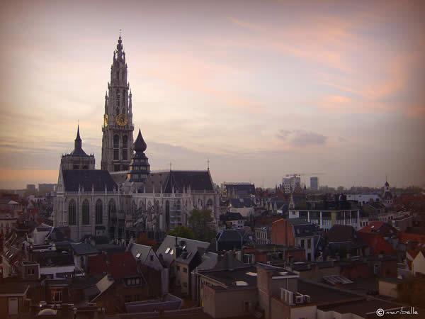 Антверпен собор в сумерках