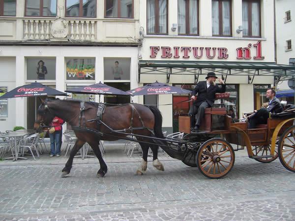 Конный тур прошлом Frituur