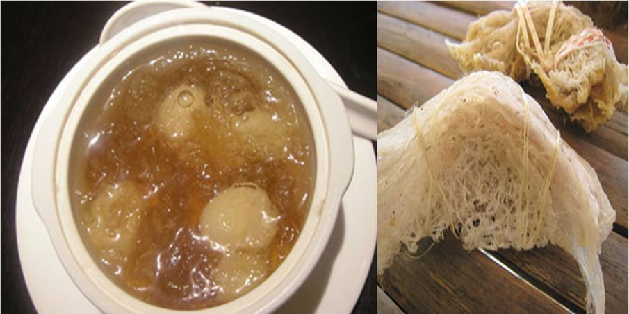 Birds Nest Soup, China