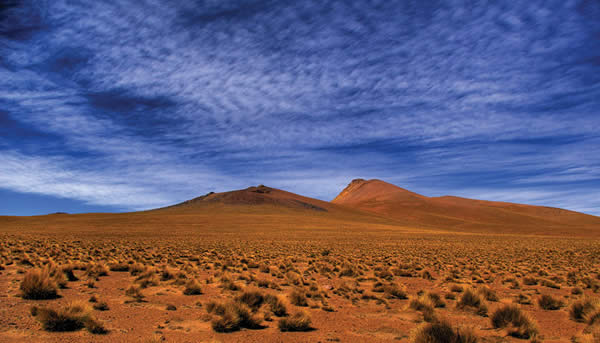 Backlands Bolivia