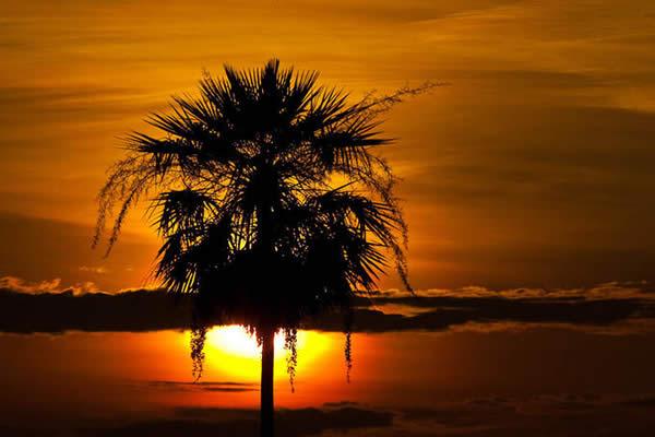 Закат над Бразилией