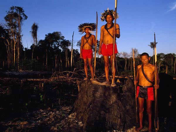 Surui индейцев