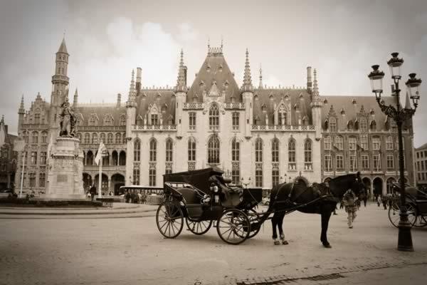 Burg площади