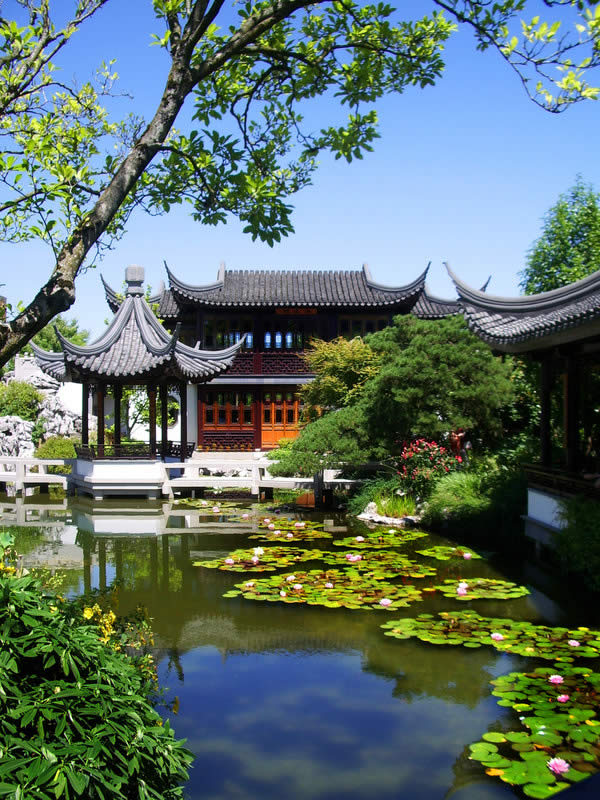 Gorgeous Chinese Garden