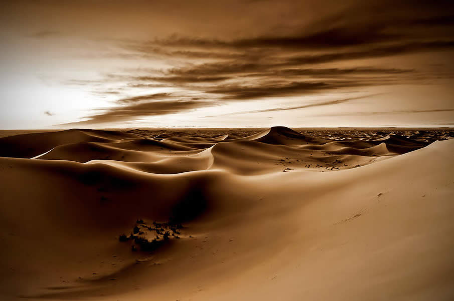 Morning Lights in the Sahara