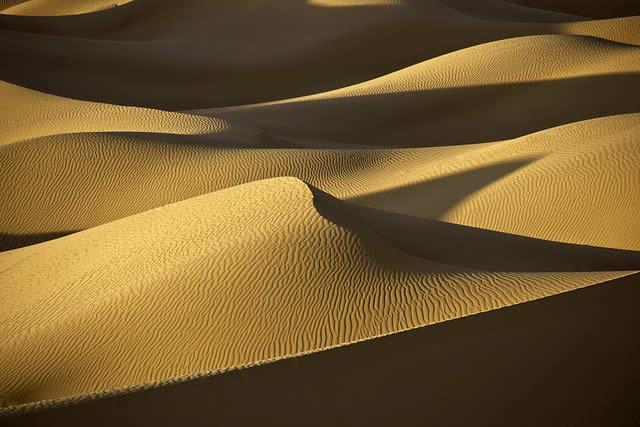 Sahara Desert Sand Dunes in Evening Light