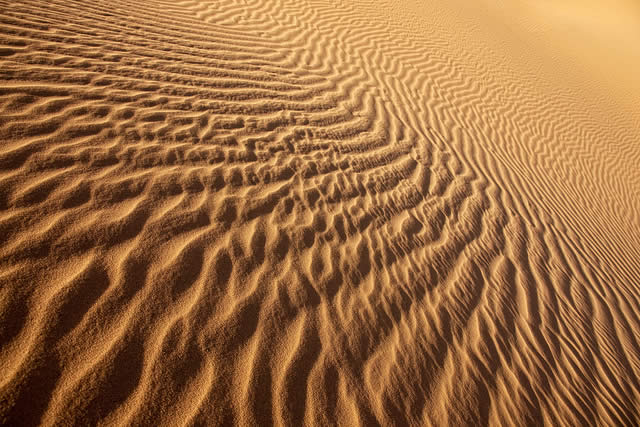 Rippled Desert Sand Dunes