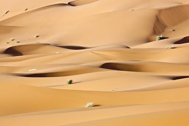 Sahara Desert Sand Dunes in Merzouga