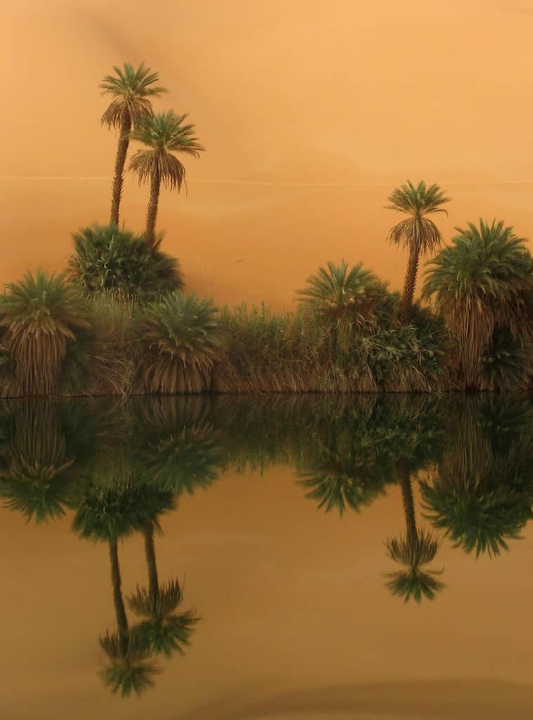 Sahara Sojourn