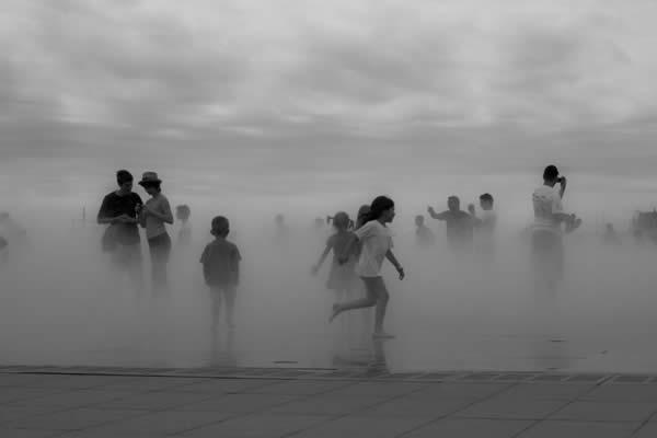 Kids in the Mist