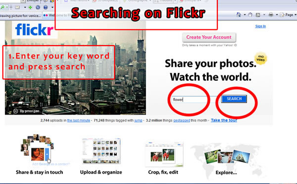 flickr stock photo search