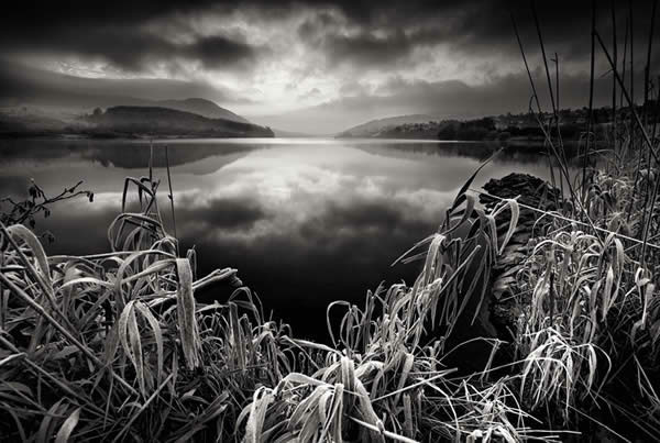 Frost on the lake B&W