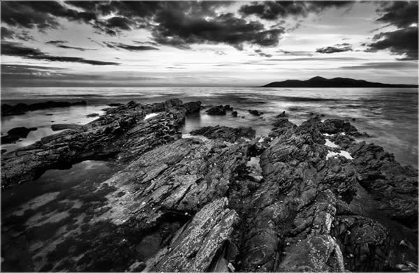 Curlew Point B&W - Killough