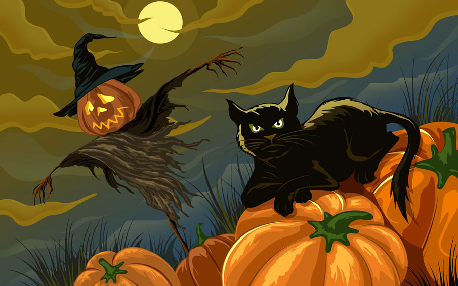 Black Cat and Jack-o-lanterns