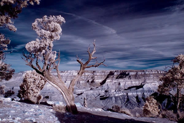 Infrared Canyon Grand