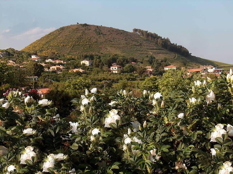 Monte Serra, Viagrande. Sicily