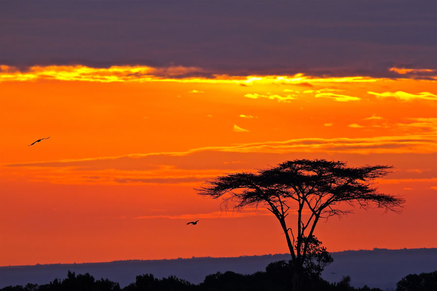 Sunset at Kenya