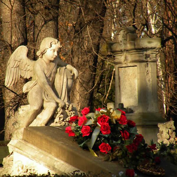 Rakowice Cemetery