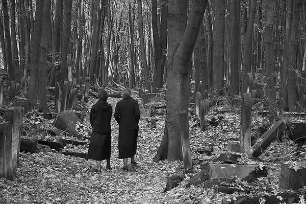 Jewish Cemetery, Warsaw V