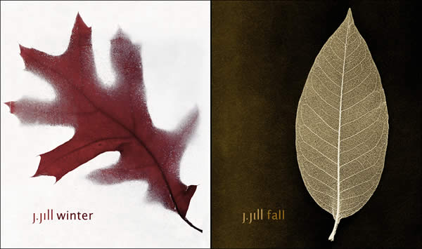 Winter-Fall