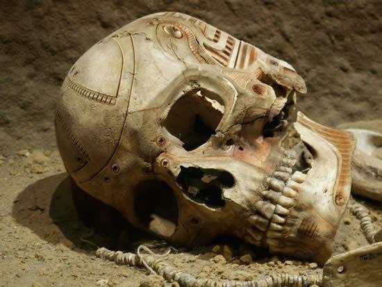 Cyborg Skull