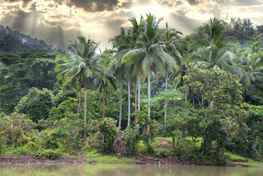 Лагуна-реки, на Филиппинах