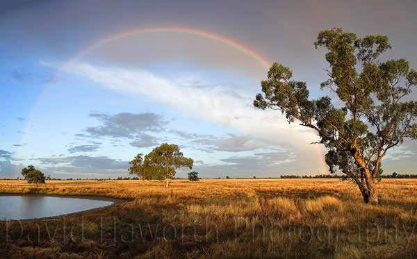 Rainbow Hour