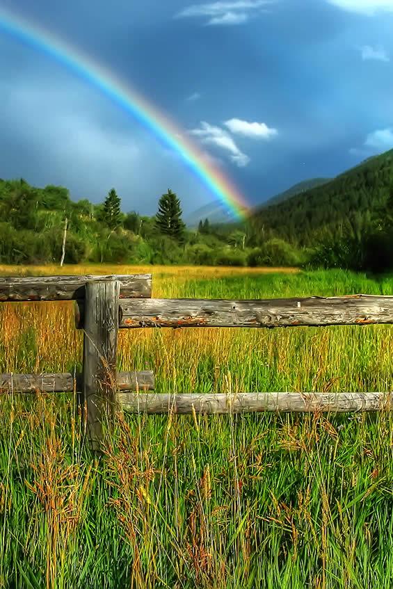 Jackson Hole Rainbow