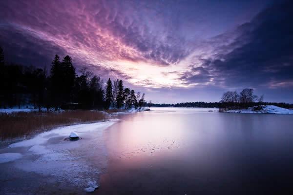 Velvet Reflections on Ice