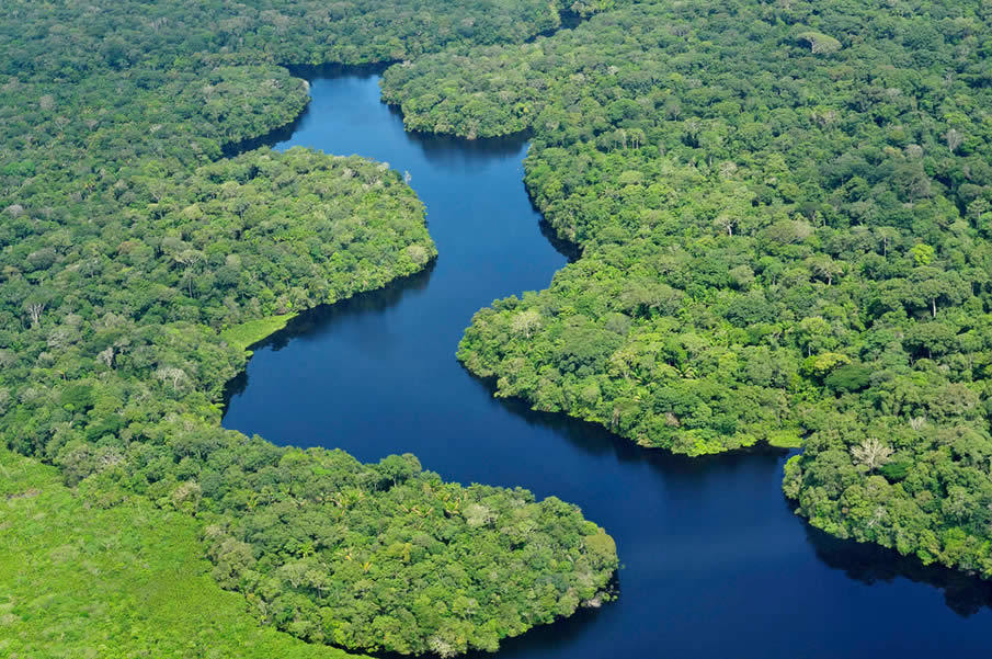The Amazon in Brazil