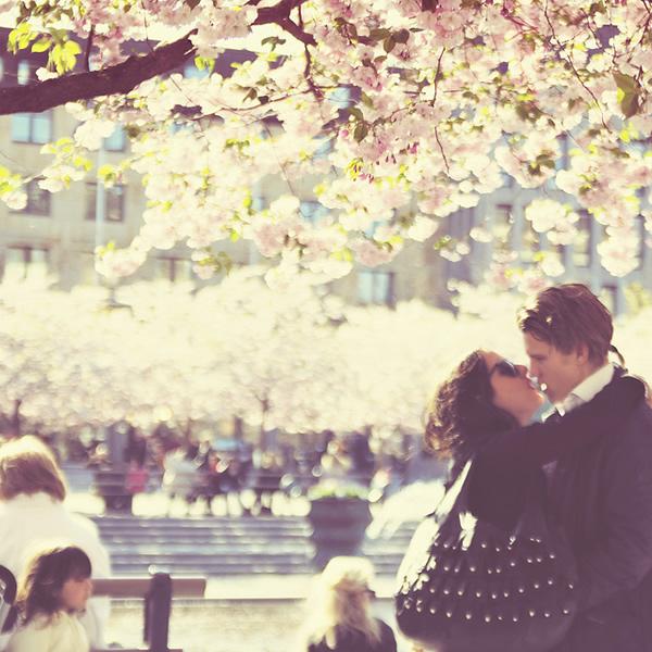 Love + Spring = True