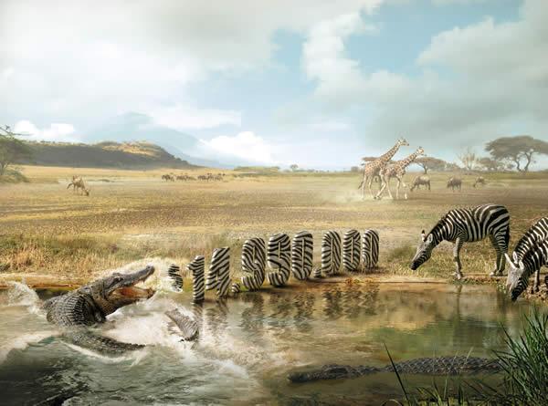 Crocodile NUEVO alta