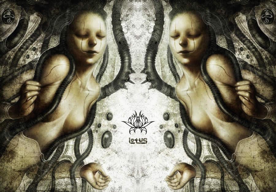 Lotus-Suisou
