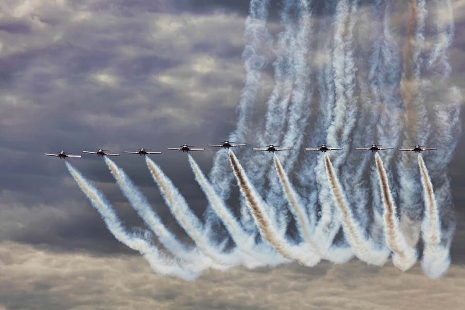 The Canadian Snowbirds
