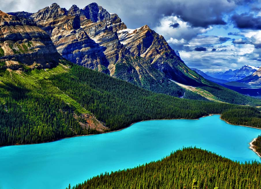 Peyto Blue Magic