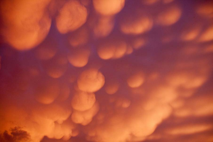 Clouds Like Cotton Balls Mammatus cloud