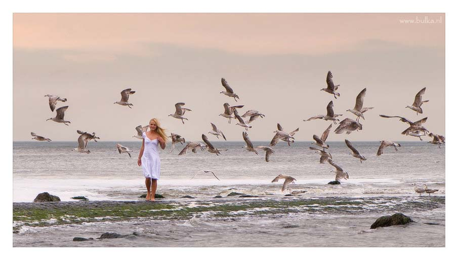 Girl and Seagulls