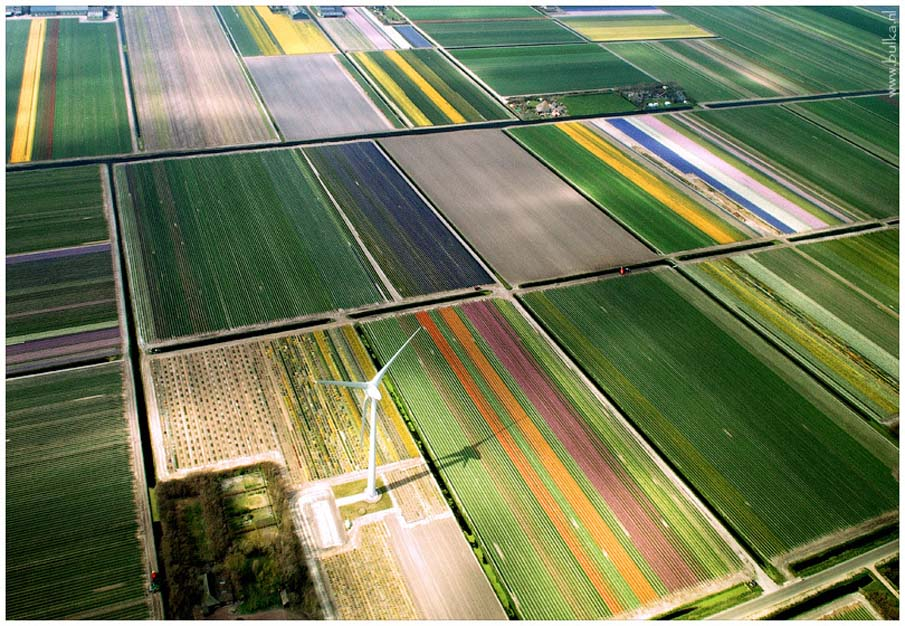 Holland in Birds-Eye View