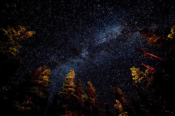 Night Sky - Olympic National Park