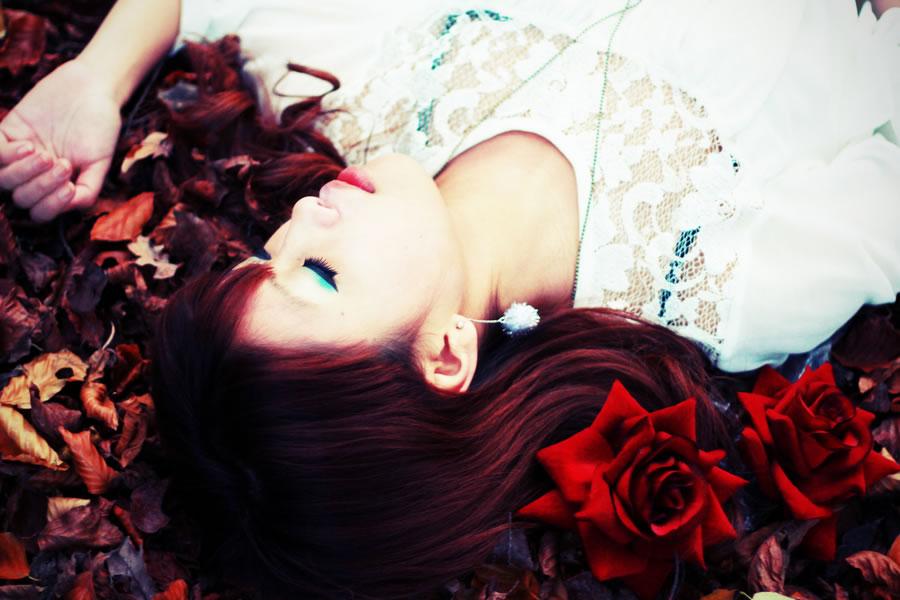Among Roses