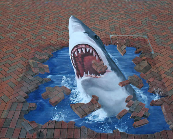 The Shark Illusion