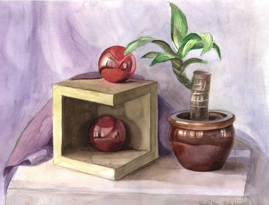 Koo178 - Still Life Drawing
